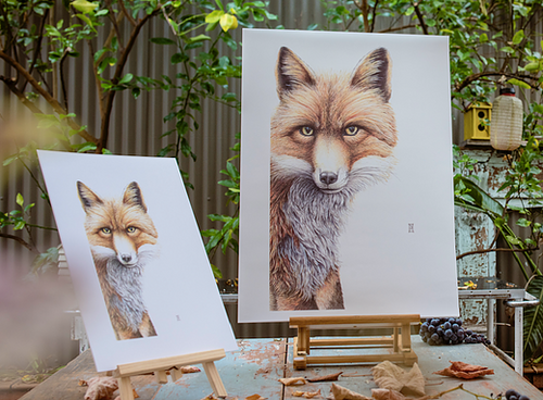 Print A3 - Fox (Grace) by Nikki McIvor
