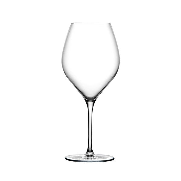Vinifera@Set of 2 White Wine Glasses 600 cc