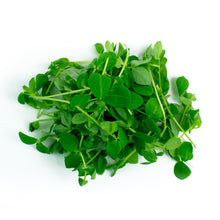 Load image into Gallery viewer, Pea Shoots