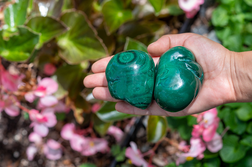 NEW Malachite Palm Stone