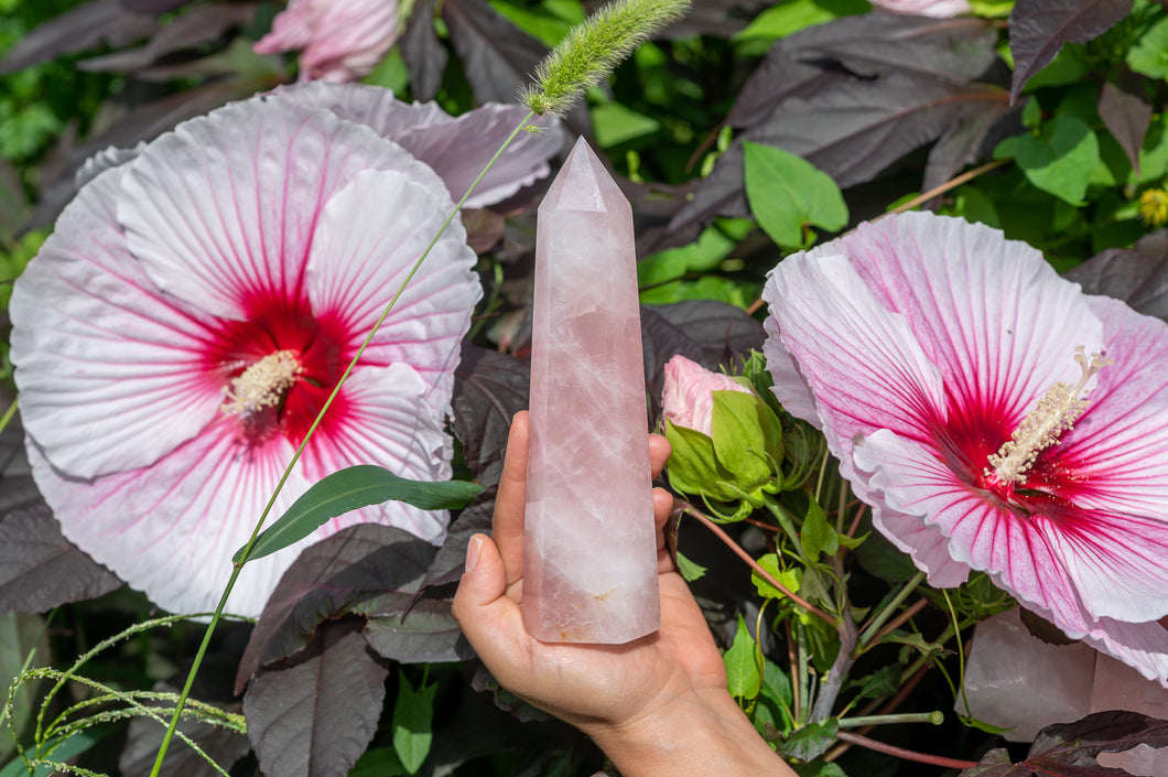 NEW Rose Quartz Point