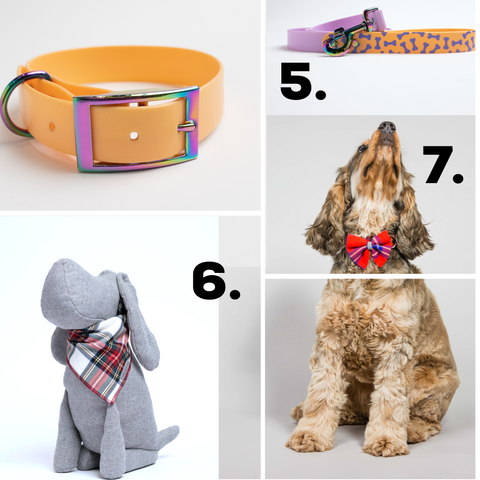 Dog accessories Christmas Gifting