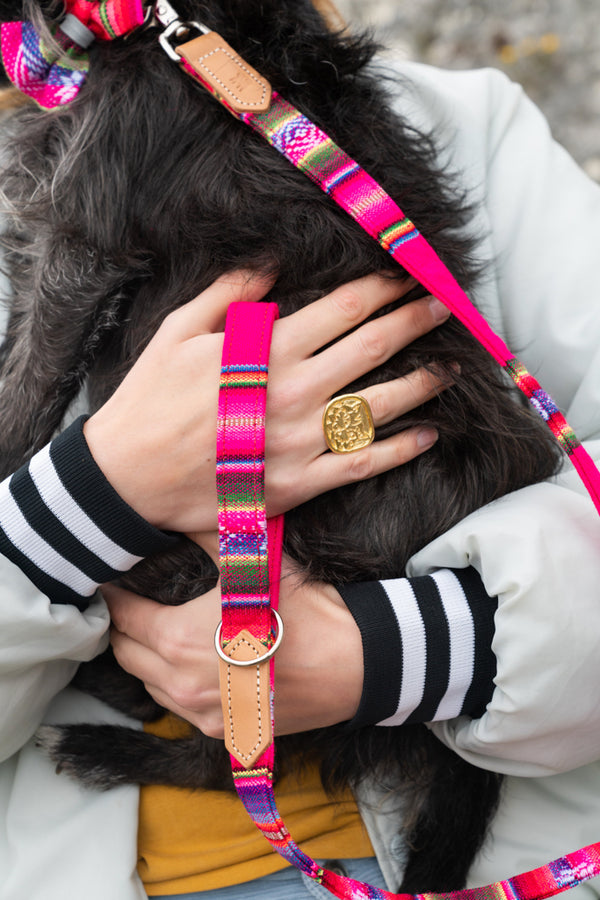 Hiro & Wolf-Classic Inca Pink Dog Lead- Close up