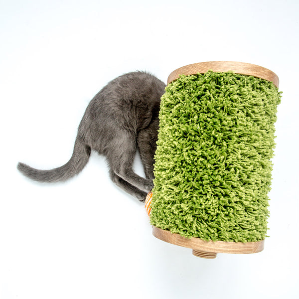 Pettel - Sheepy Scratcher