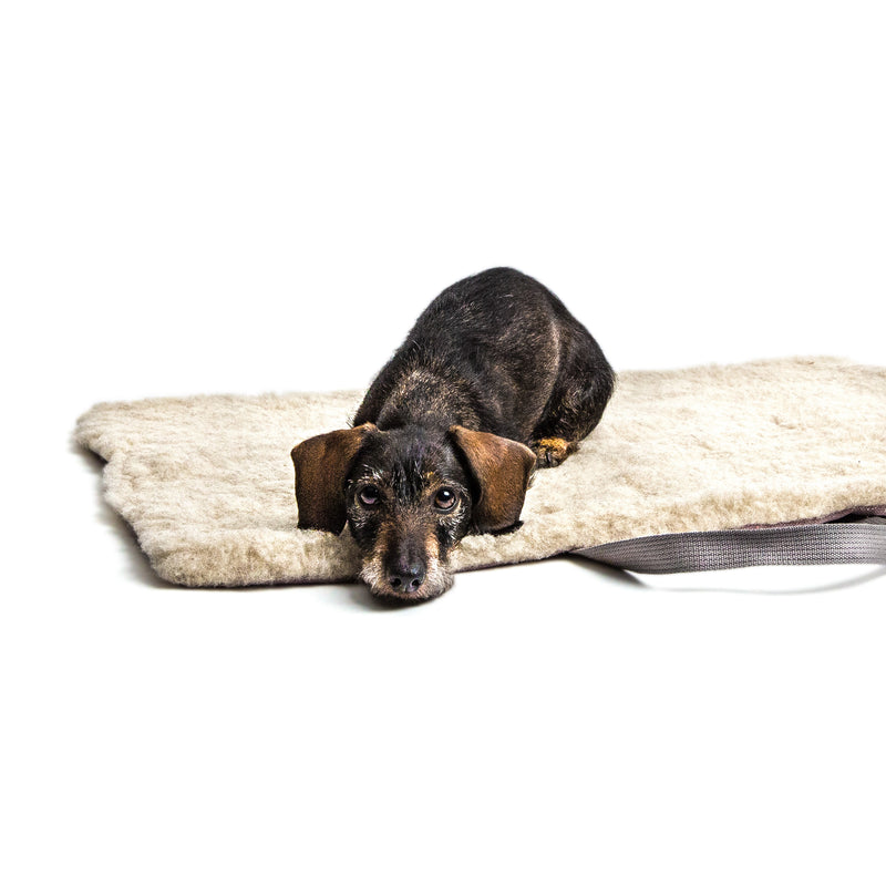 Cloud 7 -Travel Bed Tweed Rose-Dachshund