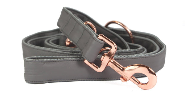 Dust Adjustable Dog Lead (Pre-order)