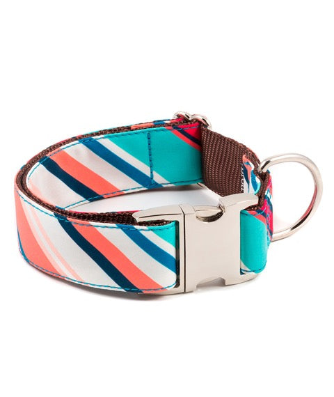 Brott-Morisca Dog Collar