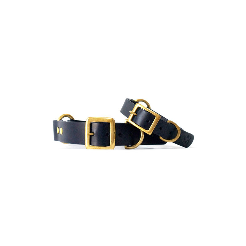 Fetch & Follow Navy Leather Dog Collar