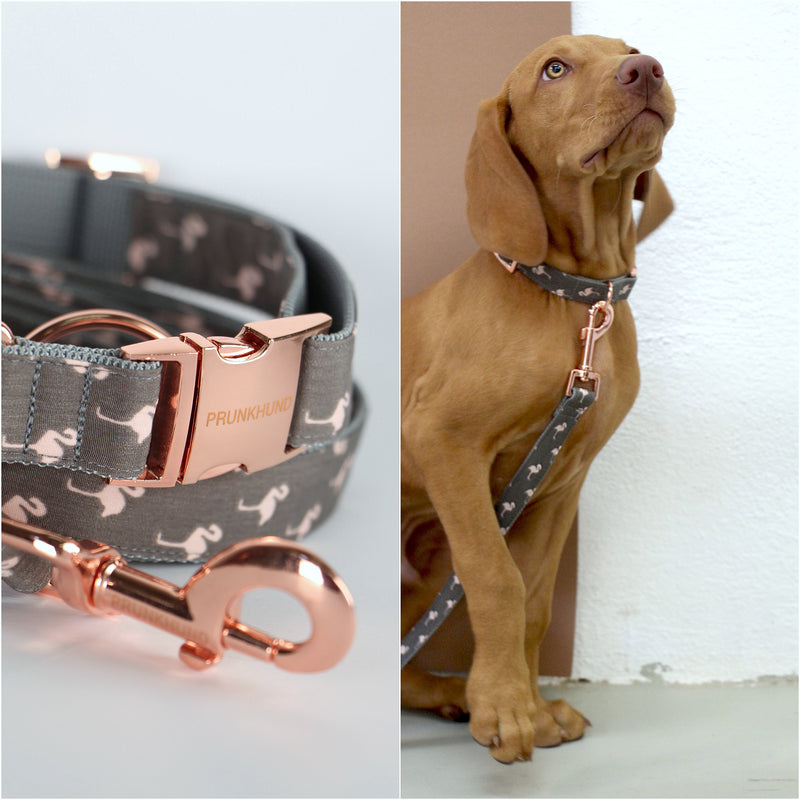 Prunkhund- Flamingo Grey Dog Lead-Viszla
