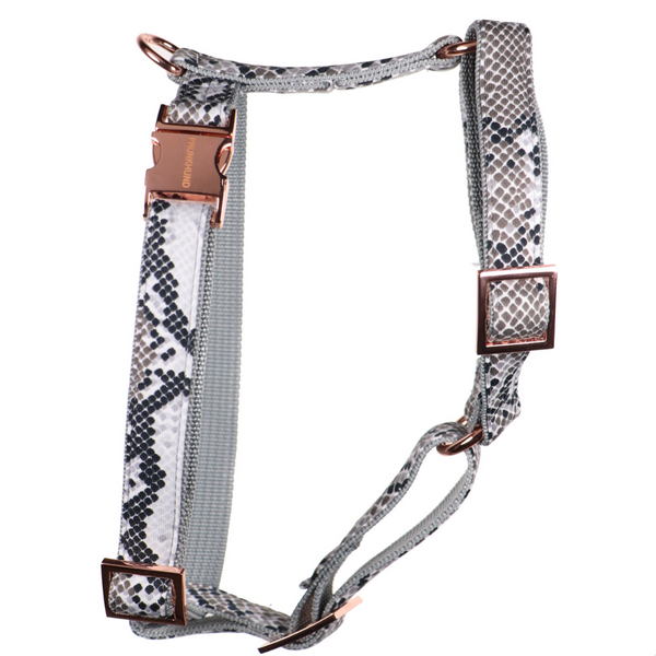 Prunkhund-Python  Dog Harness