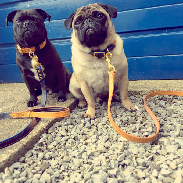 Houndworthy-London Series Leather Dog Leads-Pug