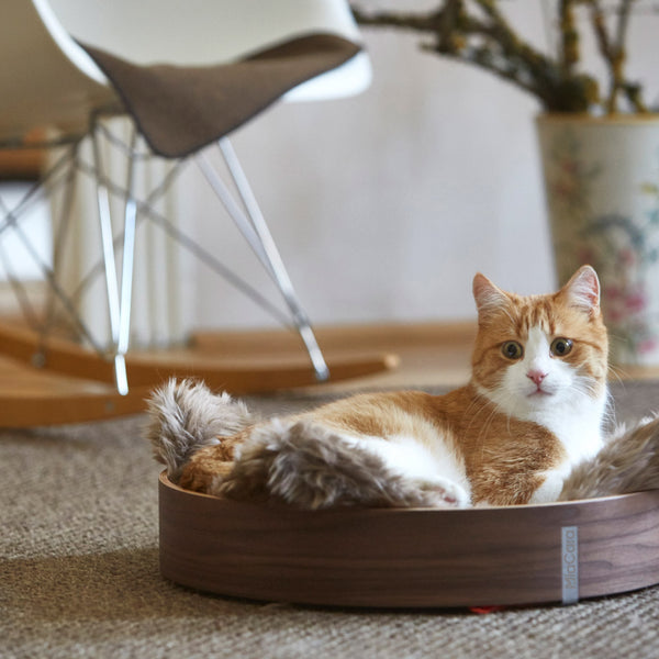 Anello - Cat Basket (Walnut) - Lifestyle