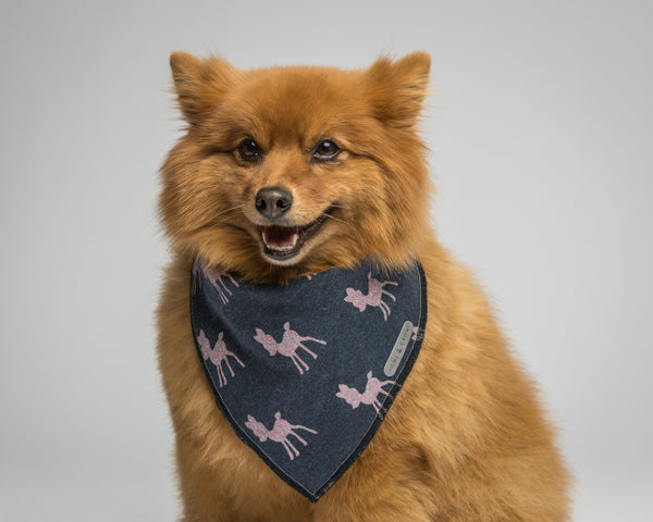 Howl & Growl-Dog Bandana-Doe a deer-Pomeranian