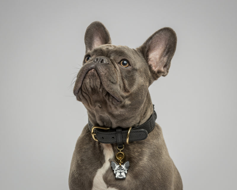 Howl & Growl-Dog Tag-Frenchie