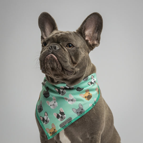 Howl & Growl-Dog Bandana-Frenchie