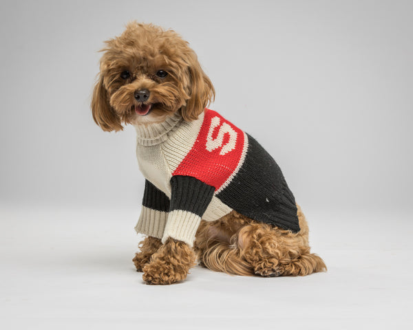 Maxbone-Dog Sweater-Small-Belle