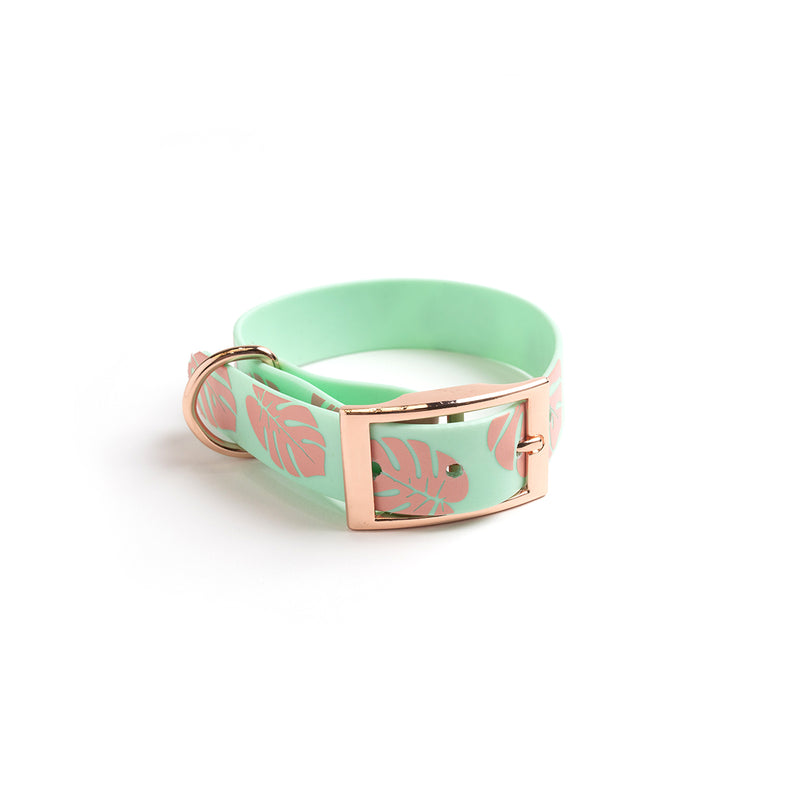 Seafoam Dog Collar-Monstera Leaf