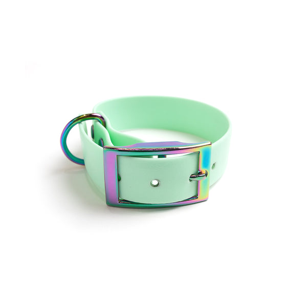 Seafoam Green Dog Collar