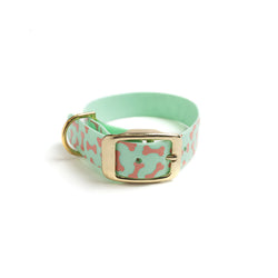 Seafoam Green Dog Collar_Bones