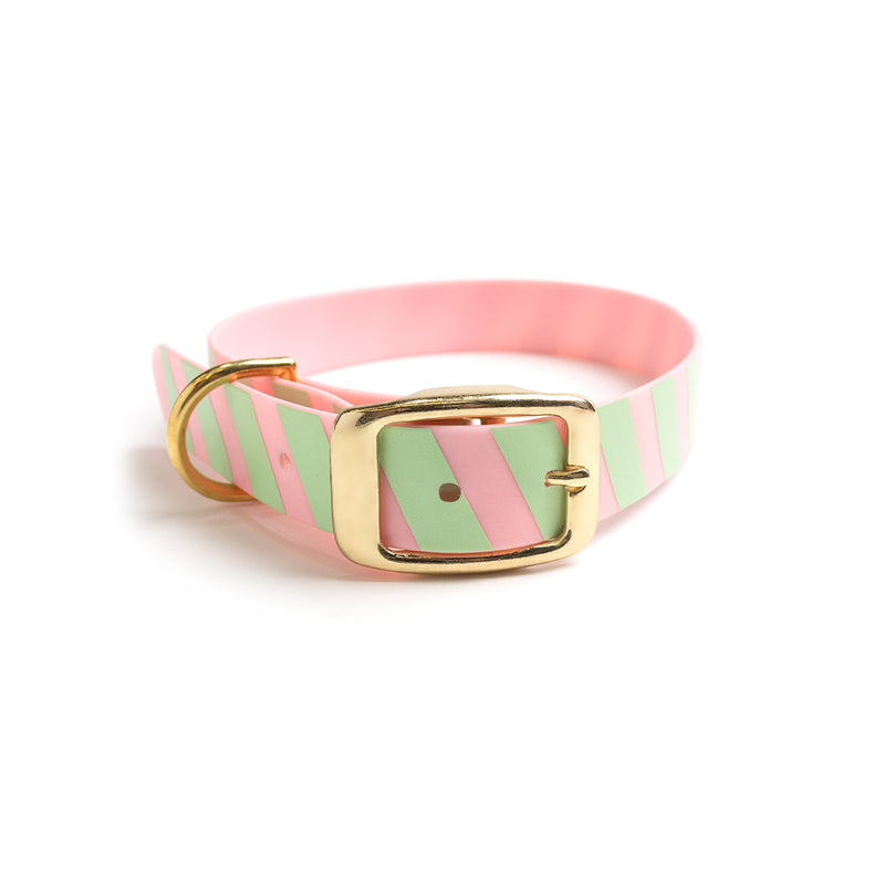 Think Pink Waterproof Dog Collar-Stripe