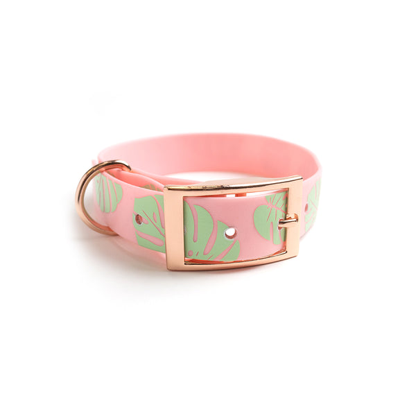 Think Pink Waterproof Dog Collar-Monstera Leaf