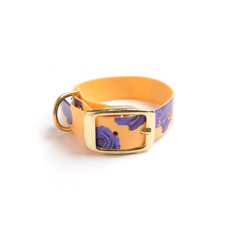 Peach Melba Dog Collar -purple flowers