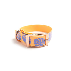 Peach Melba Dog Collar Monstera