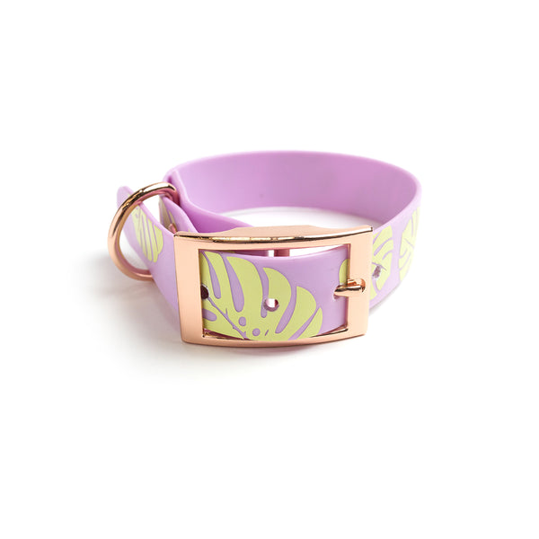 Miami Sky Dog Collar-Monstera