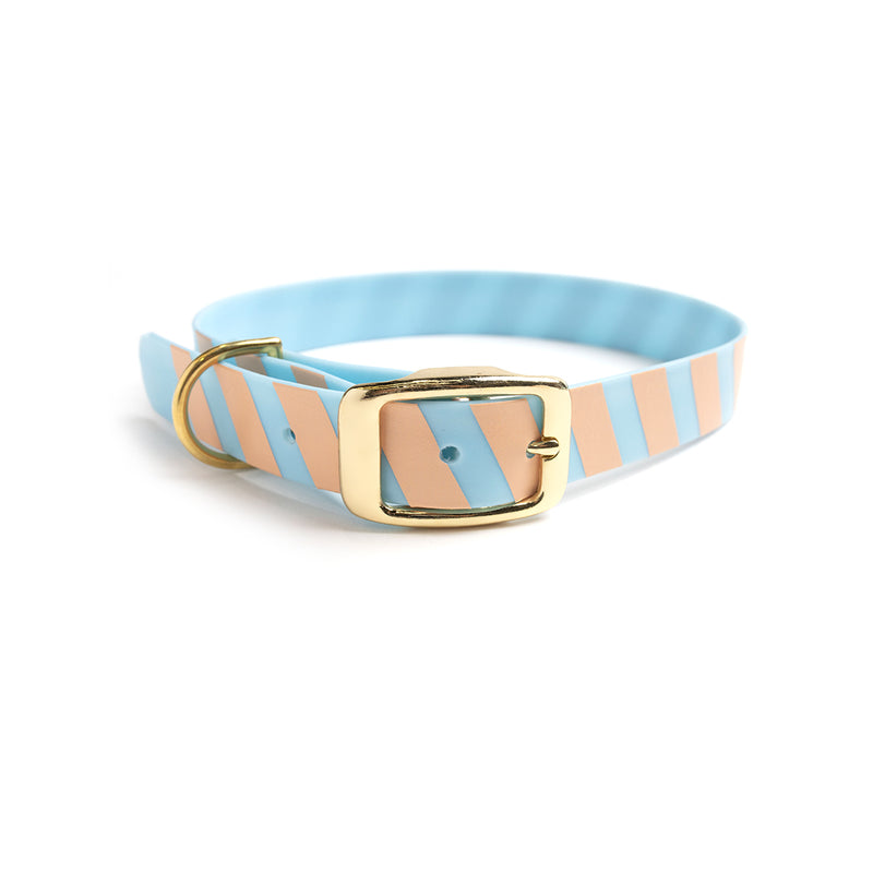 Something Blue Dog Collar Stripes