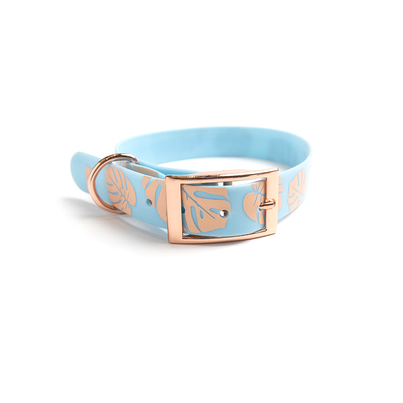Something Blue Dog Collar-Monstera
