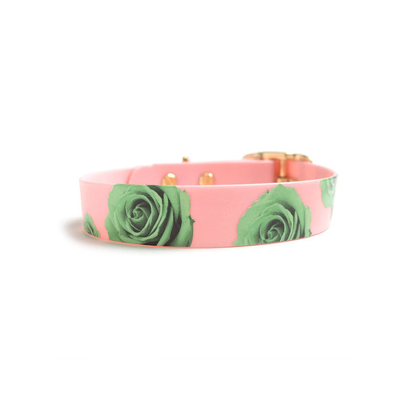THINK PINK DOG COLLAR-green rose back
