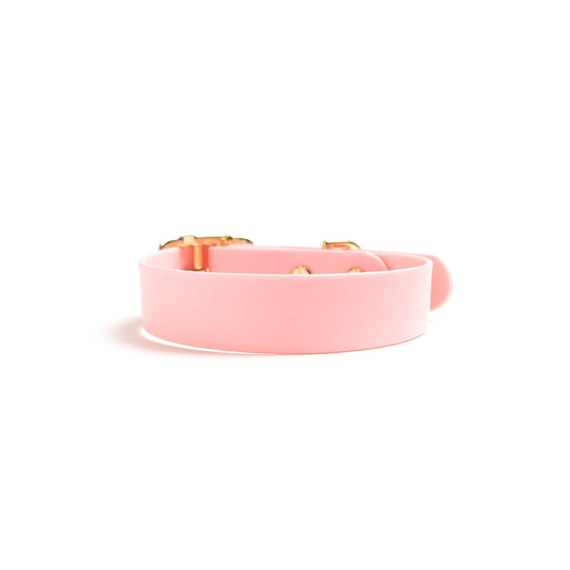 Think Pink Dog Collar Back