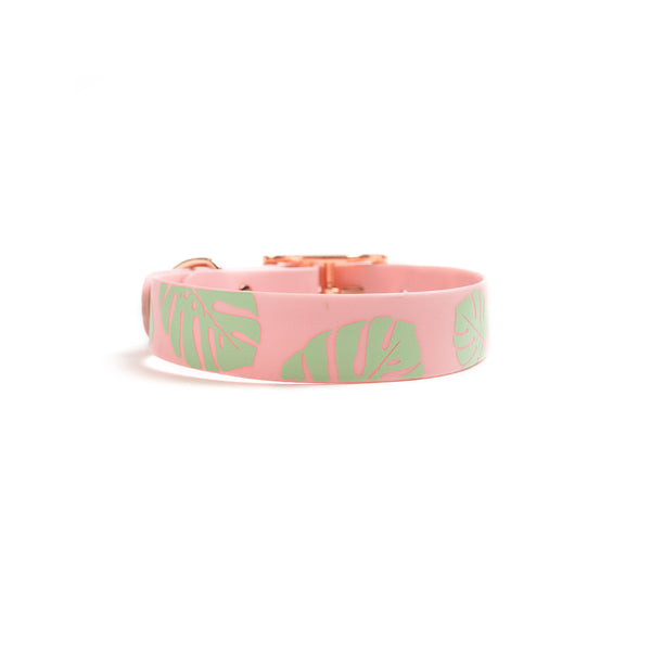 Think Pink Waterproof Dog Collar-Monstera Leaf Back