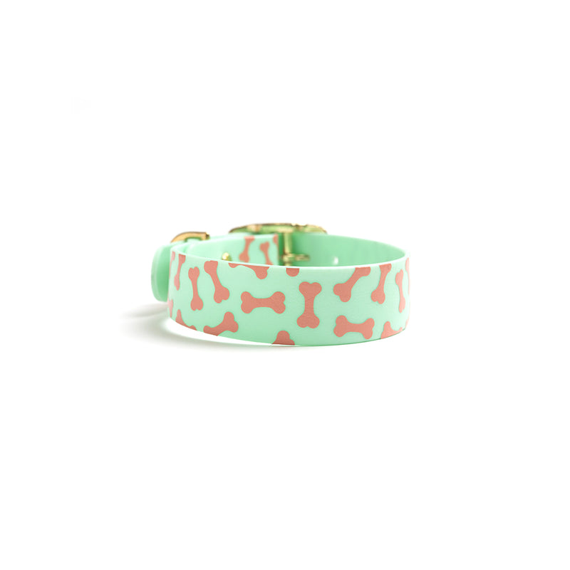 Seafoam Green Dog Collar_Bones Print