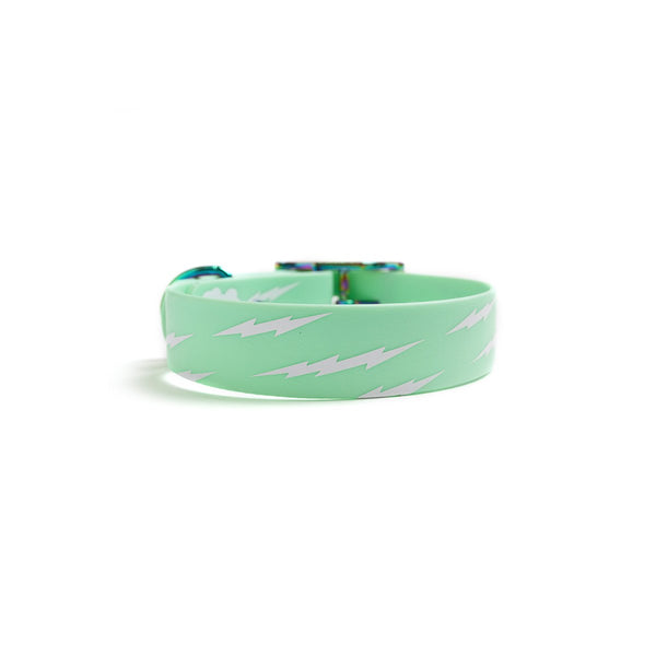 Seafoam Green Dog Collar_Lightening back