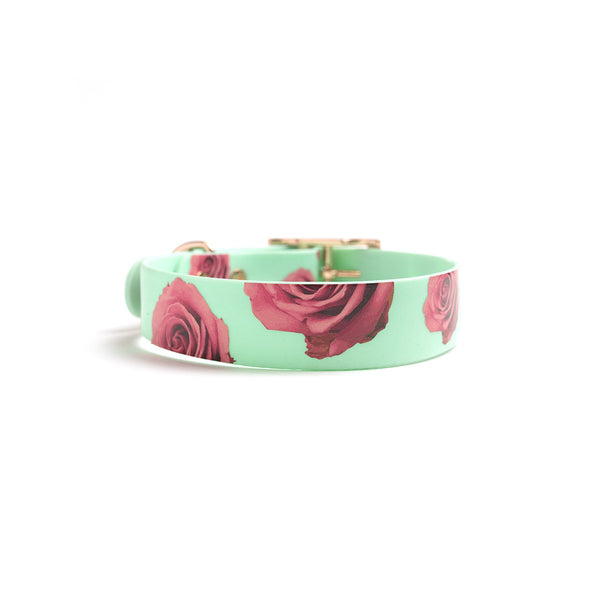 Seafoam waterproof dog collar-flower print