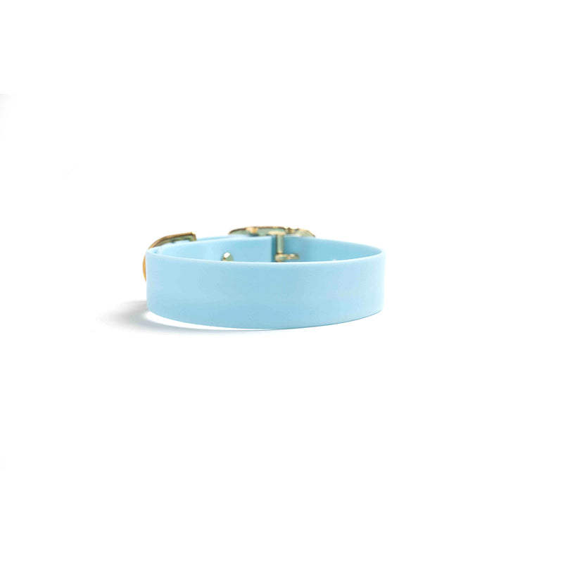 Waterproof Dog Collar Blue