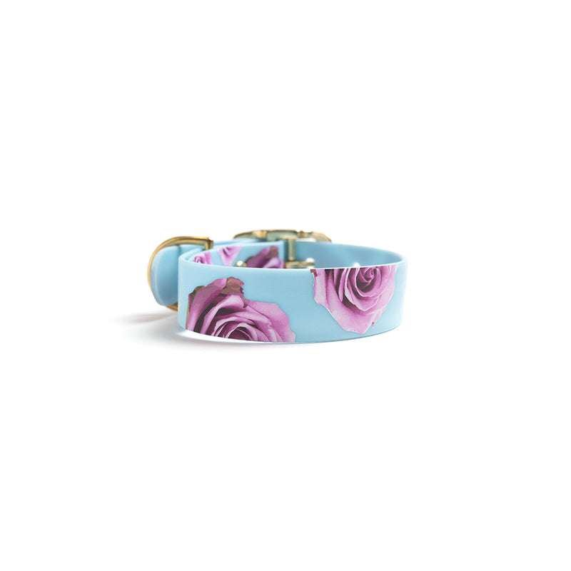 Something Blue Dog Collar Pink Rose-Back