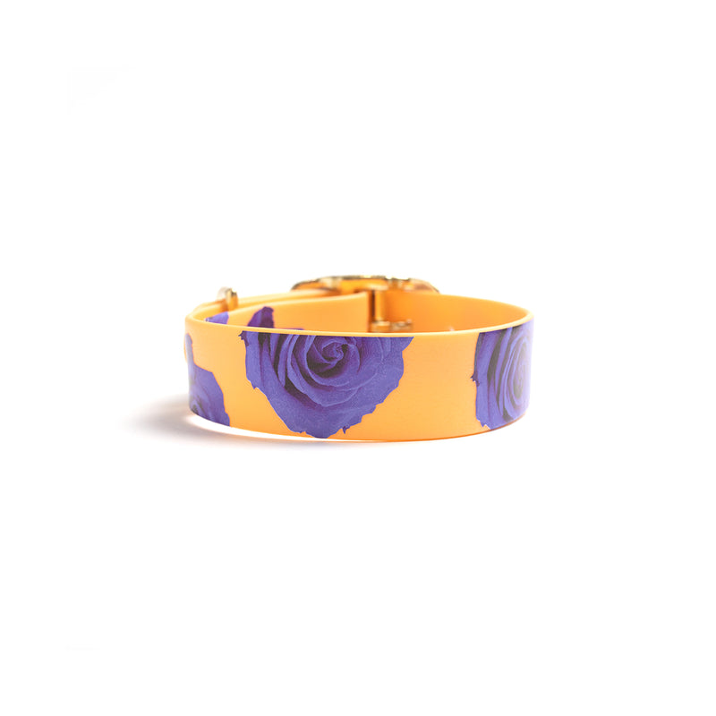 Peach Melba Dog Collar -purple flowers back