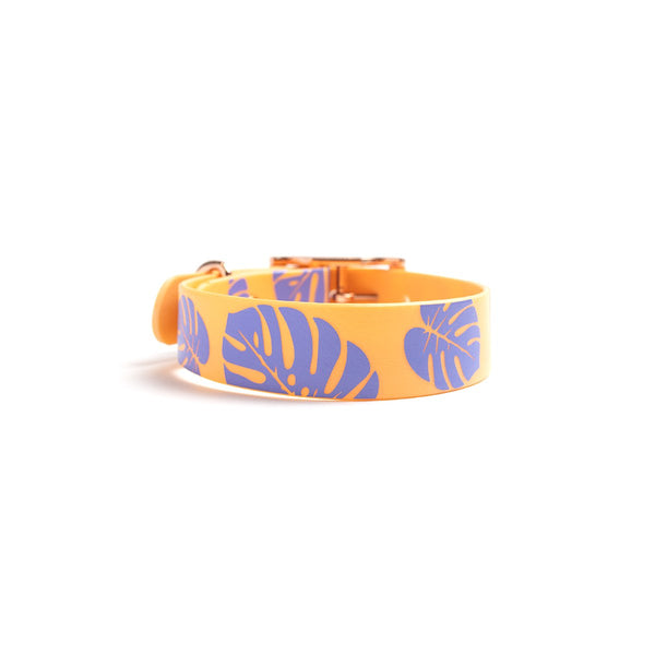 Peach Melba Dog Collar Monstera back
