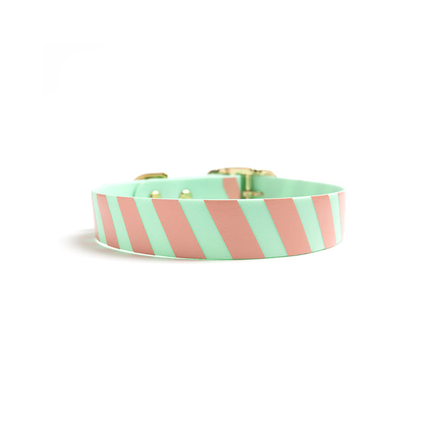 Seafoam waterproof dog collar-stripes