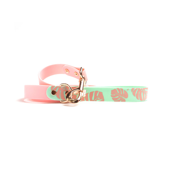 Think Pink Waterproof Dog Lead-Monstera