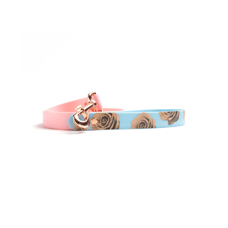 Think Pink Waterproof Dog Lead-Blue Rose
