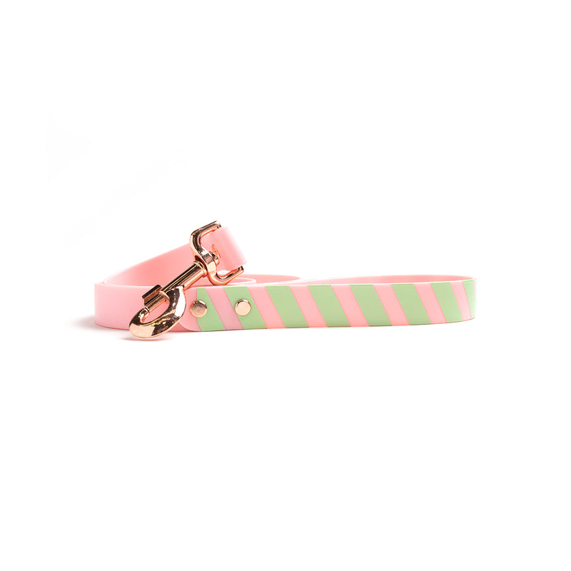 Think Pink Waterproof Dog Lead-Stripes