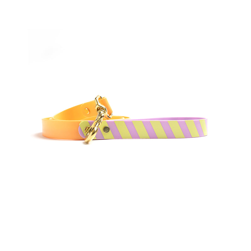 Peach Melba Waterproof Dog Lead-stripes