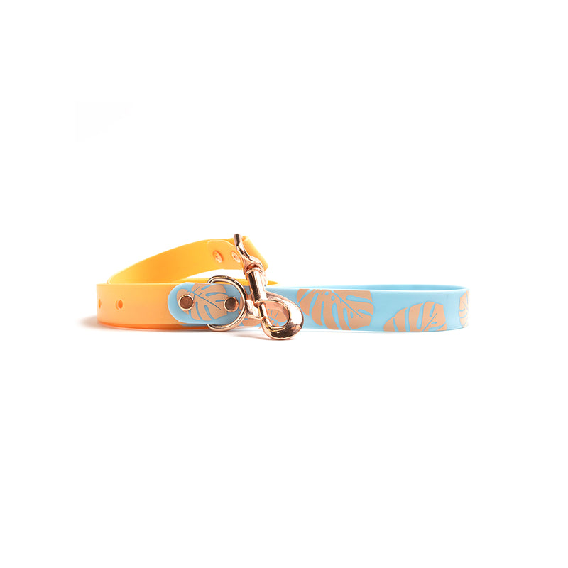 Peach Melba Waterproof Dog Lead-Blue Monstera