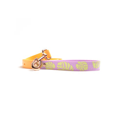 Peach Melba Waterproof Dog Collar-Monstera Purple