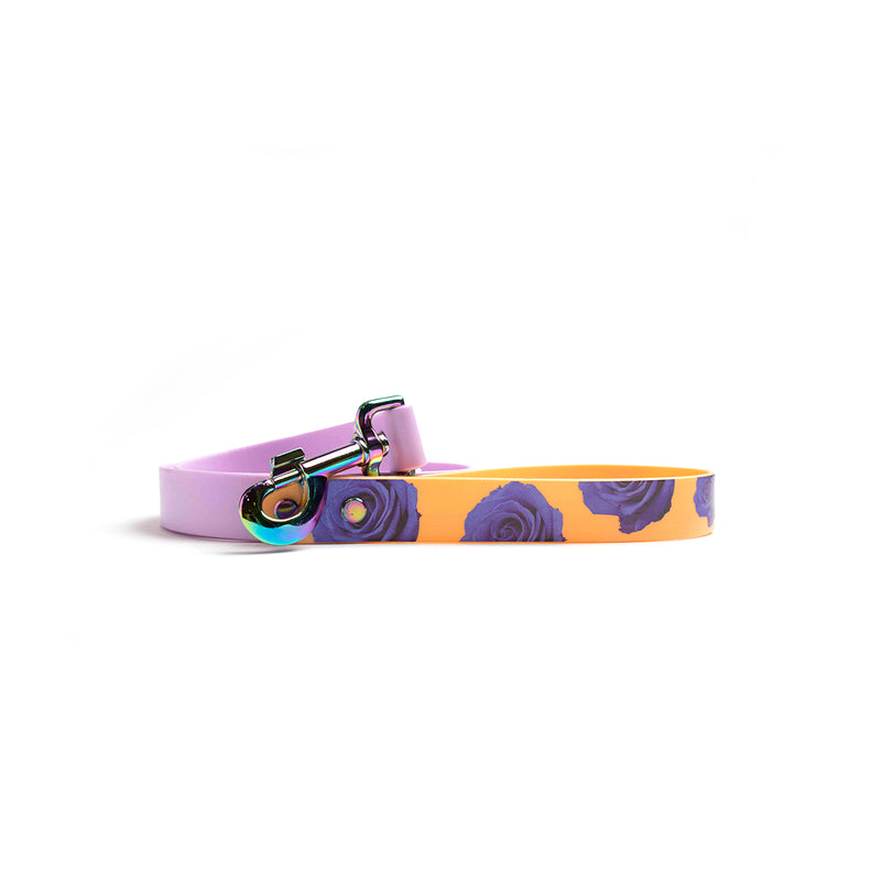 Purple Waterproof Dog Lead-Orange and purple flowers