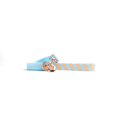 Something Blue Dog Lead-coral stripes