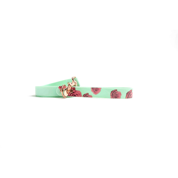 Seafoam Dog Lead-Red Rose